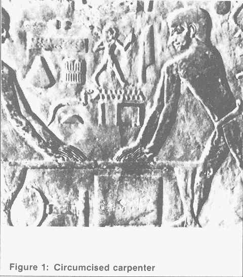 سنگ نگاره ی دیگری از مصر باستان با موضوع کارگاه نجاری , نکته ی جالب توجه برای ما ختنه شده بودن نجار است